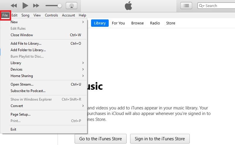 DVD auf iPad vmp abspielen Schritt 4