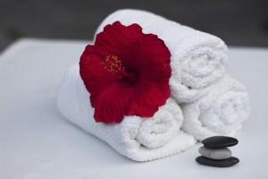 ace uniform cloth towels service