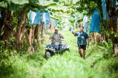 Sam and Steven Lizzio received funding in previous rounds to reduce sediment runoff from their banana farm. (Courtesy Terrain NRM)