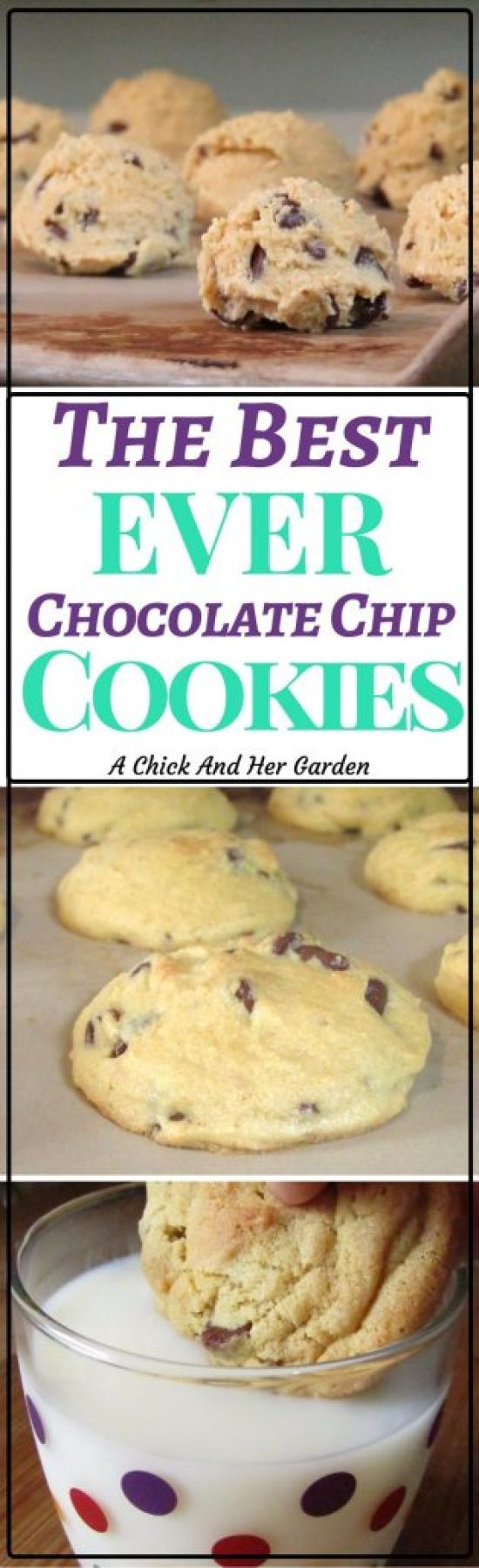 These chocolate chip cookies are so amazing you can use them as a form of payment!