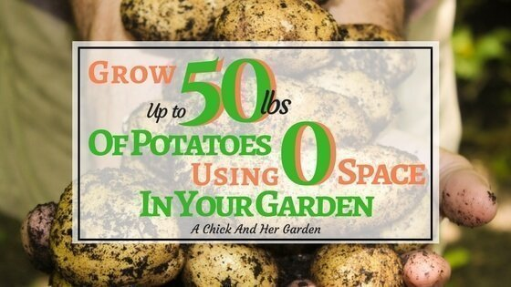 How Do You Save Space Growing Potatoes