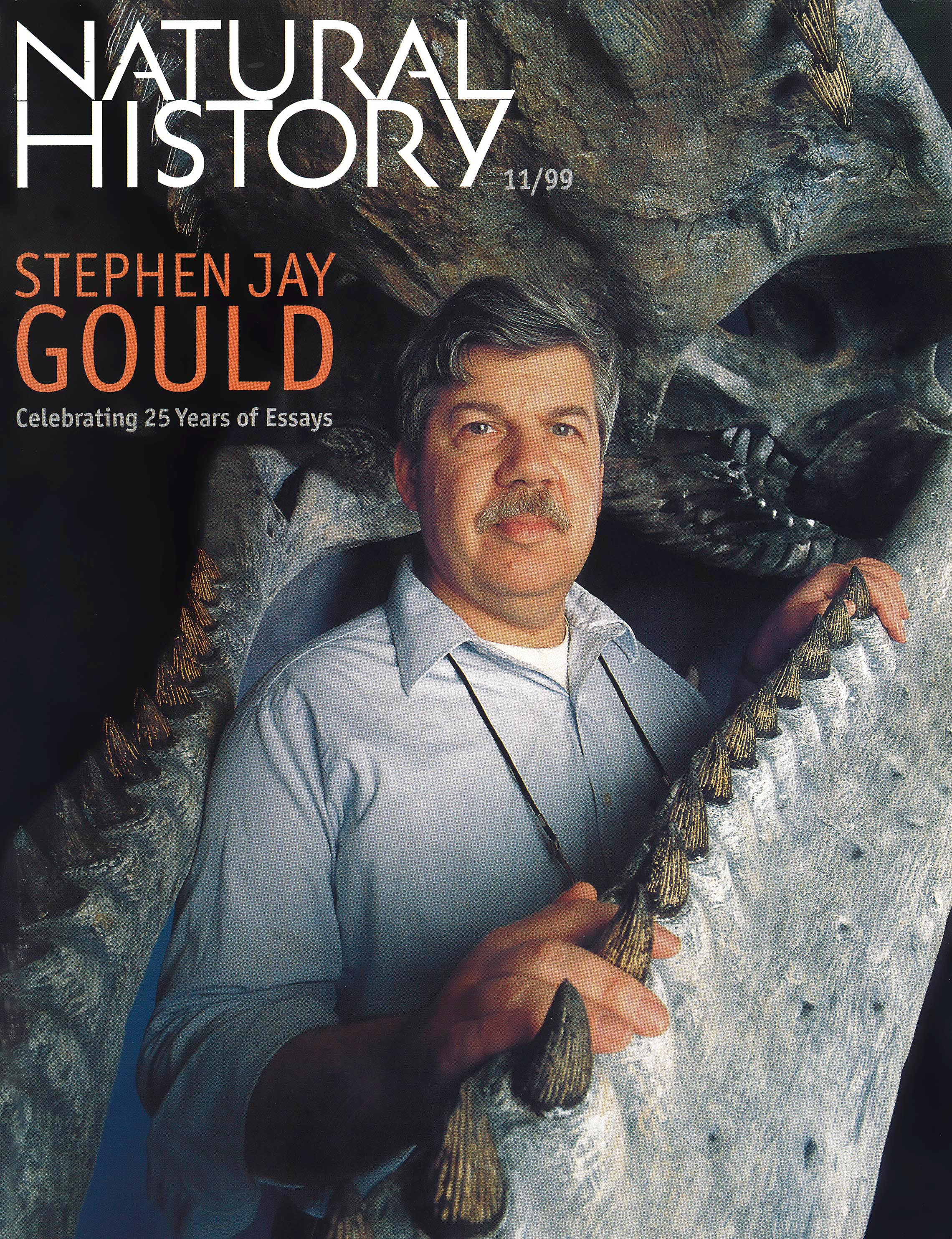 Image result for stephen jay gould