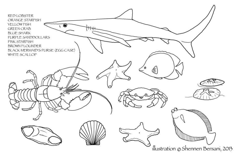 Free Coloring Pages from Shennen