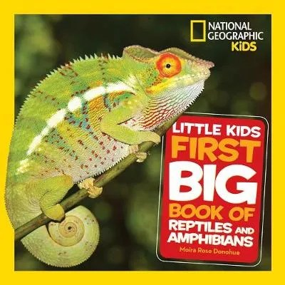 Little Kids First Big Book of Reptiles and Amphibians – National Geographic