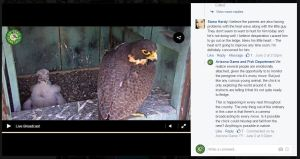 Screen shot of Facebook Live chat session