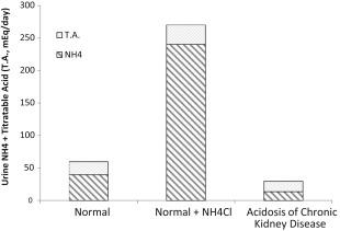 Regulation of Acid-Base Balance in Chronic Kidney Disease