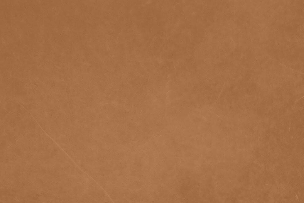 Vintage koža: Camel 21004