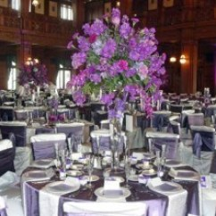 Rent Chair Covers For Wedding Modern Kids Table And Chairs Rental A Classic Party When Planning Your Or Any Event One Of The Many Items On To Do List Will Be Pick Out Seating Guests Who Knew There Would So