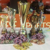 Zenith Women's Basketball League Trophies
