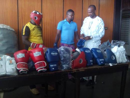 We'll focus on developing Boxing Stars for Nigeria, says Enugu State Assembly