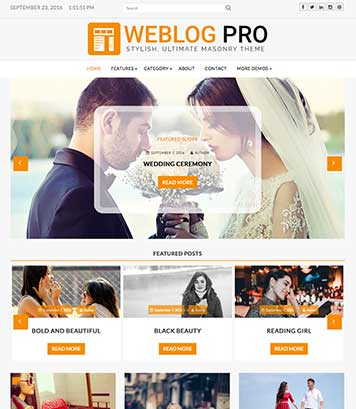 WeblogPro - The most versatile theme for blog, news and magazine sites