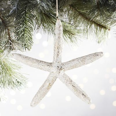 Favorite Neutral, Beachy Ornaments