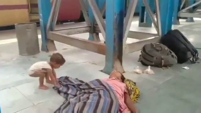 child trying to wake up dead mother, bihar plight of migrant workers in India