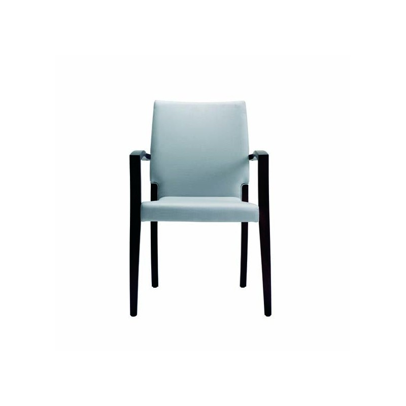 Chaise Avec Accoudoir Theorema Chaise Avec Accoudoirs