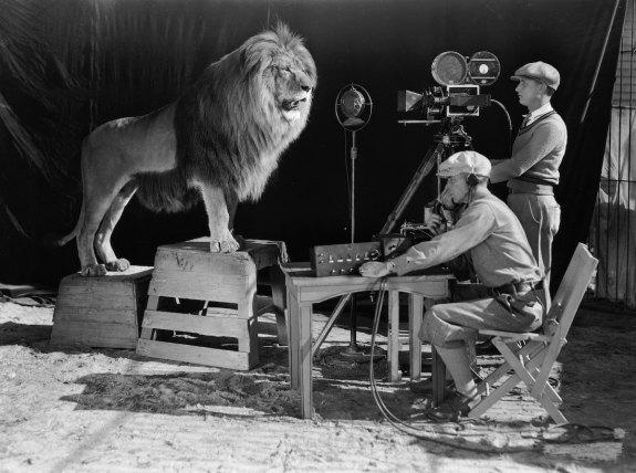 MGM-Lion-5