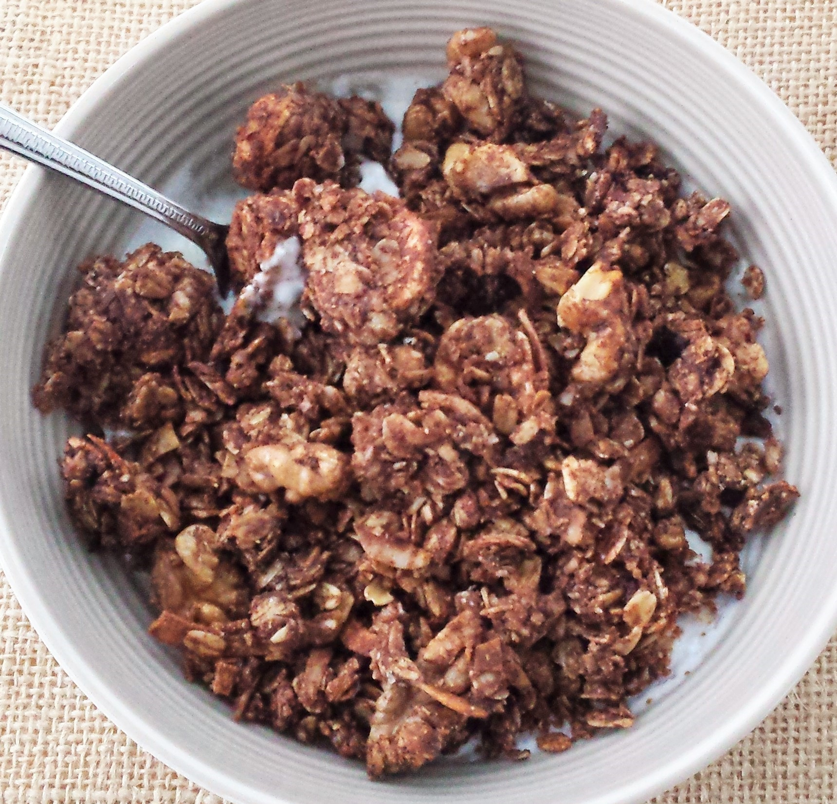 Chocolate Coconut Banana Granola 4