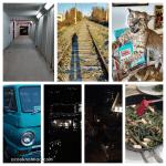 365 Project 2015 – week 48