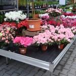 Capillary matting for plants