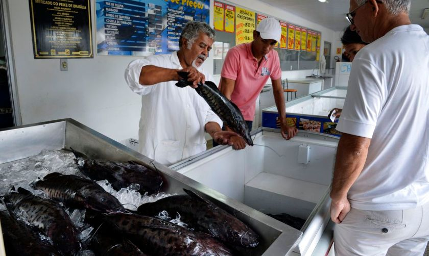 'Black urine' disease may be related to seafood consumption