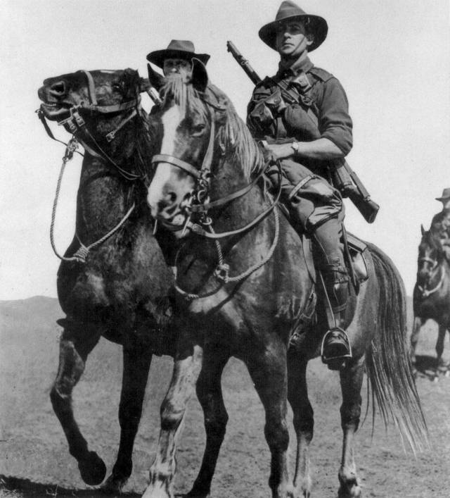 Troopers of the Australian Light Horse mounted on their 'Waler' horse, brought from Australia. These amazing horses in operations could carry up to 500lb and go without water for 40-60 hours.