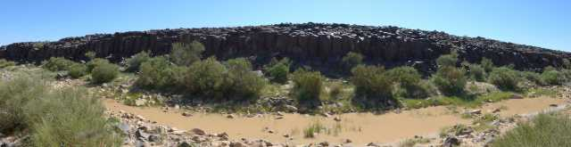 Panoramic view of the basalt cliffs perched above Wadi Hassan, pooled with water from the winter rains. Nearly every panel along the cliff face is carved with some form of rock art. Photo by C.D. Allen.