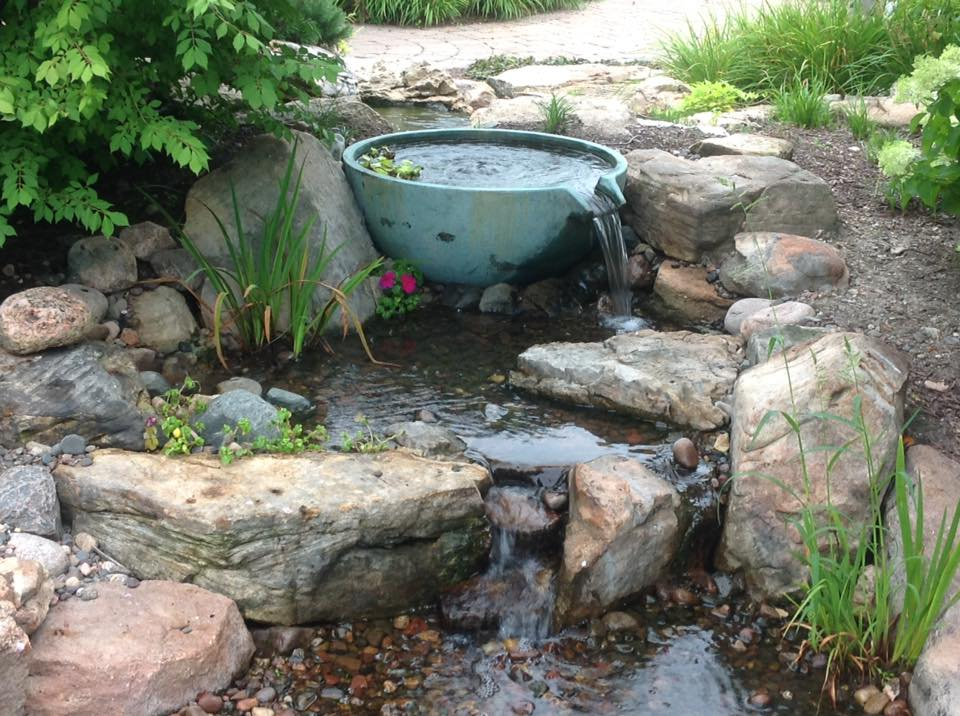 Small Container Pond Ideas