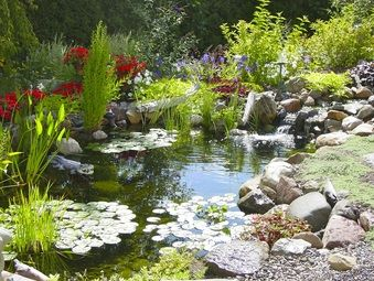Acorn Ponds Waterfalls Pond Maintenance Installer Repair Contractor Landscape Design Rochester Ny