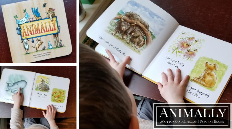 Looking for great book recommendations for your early readers? We're sharing a few of our favorites. Our favorite Usborne Books for 3-year-olds. Book Guide for 3 year olds and toddlers. Usborne Books make great gifts too!