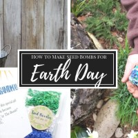 How to Make Earth Day Seed Bombs