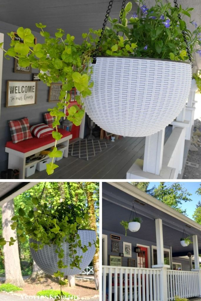 Front Porch Decorating Planters and Hanging Baskets for Porches. Best Plants for Hanging Baskets. Where to find Hanging Baskets. Perennial Hanging Basket Plants. White Resin Hanging Baskets for Porches.