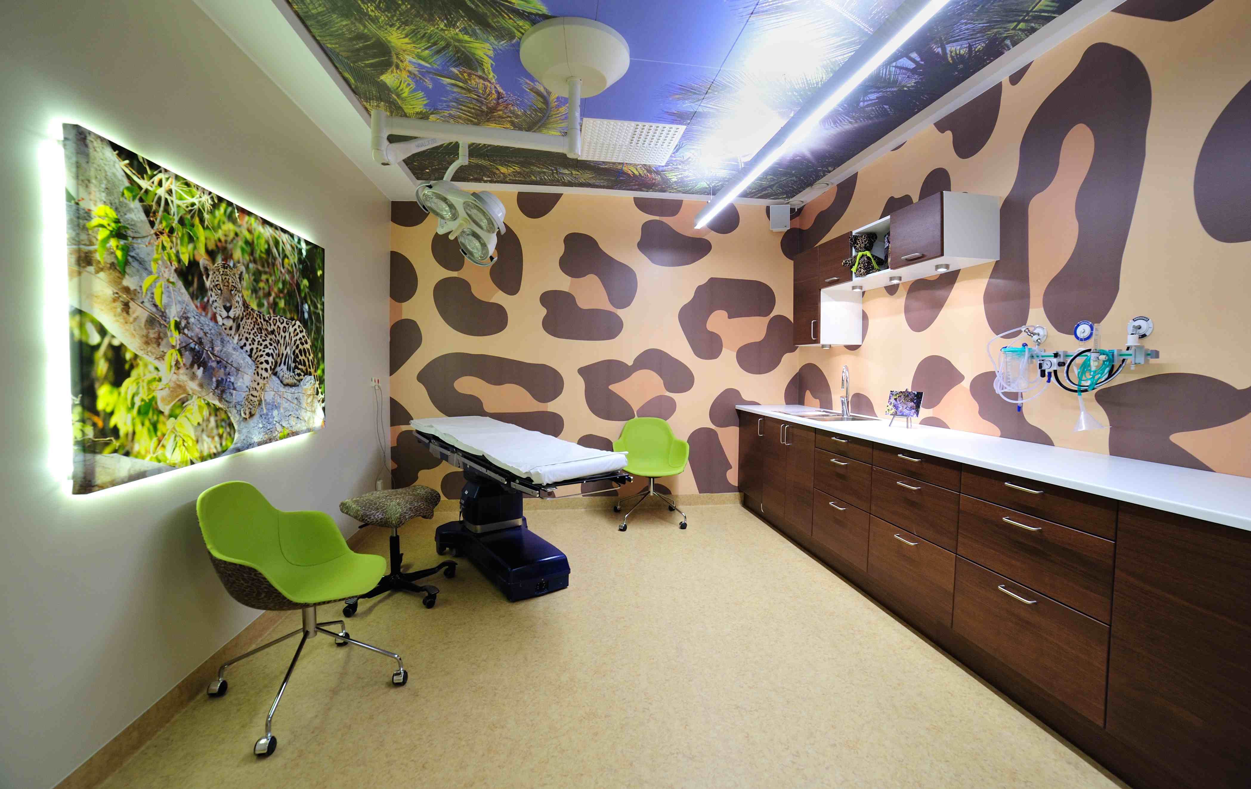 How The Latest Healthcare Design Trends Impact The