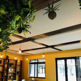 Restaurant-Acoustics-3
