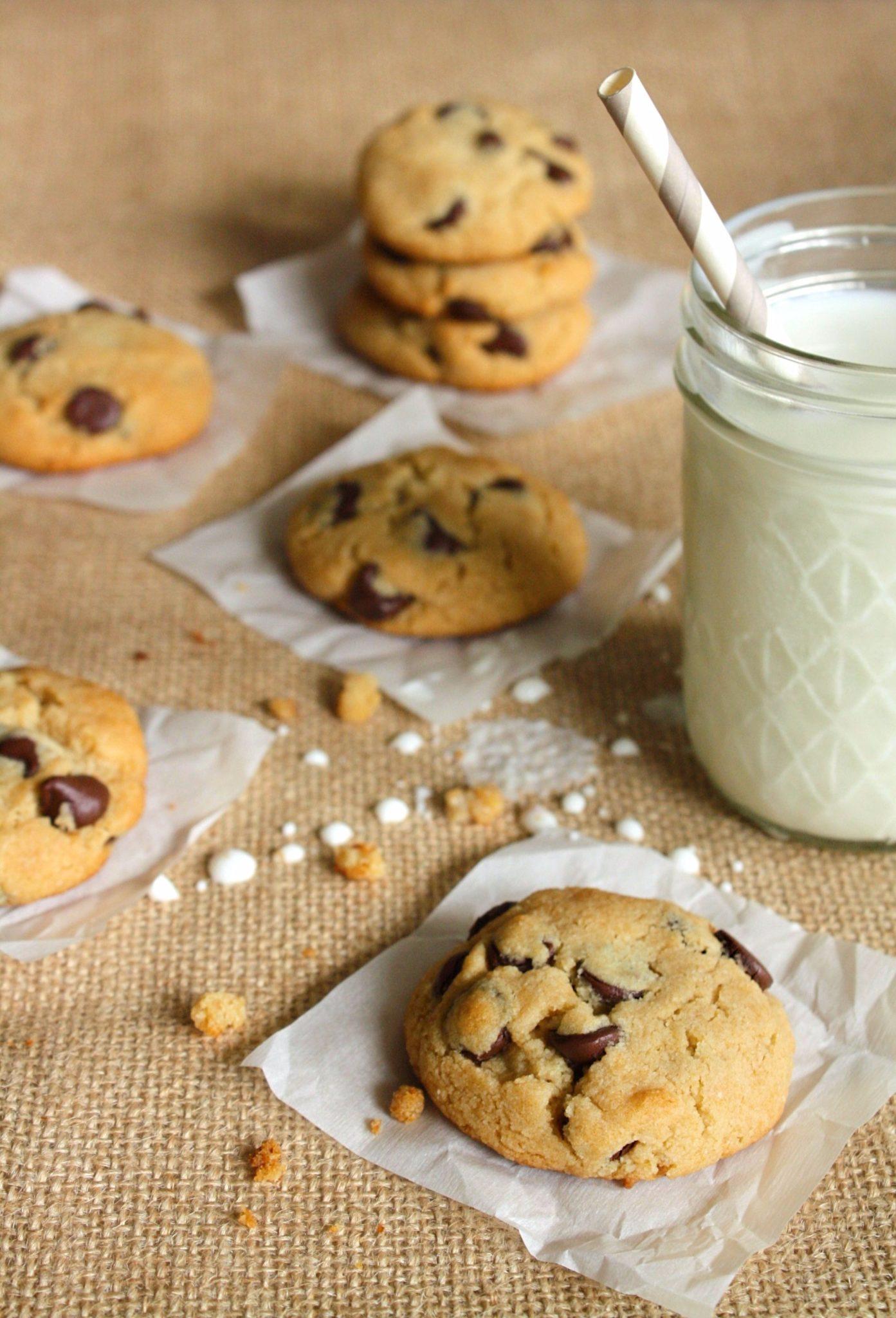 Chocolate Chip Cookies (Low Carb/Paleo). Aviso: Você está prestes a experimentar o melhor chocolate chip cookies que já existiu! Low Carb/Paleo ou não! Já vou avisando logo, são viciantes!