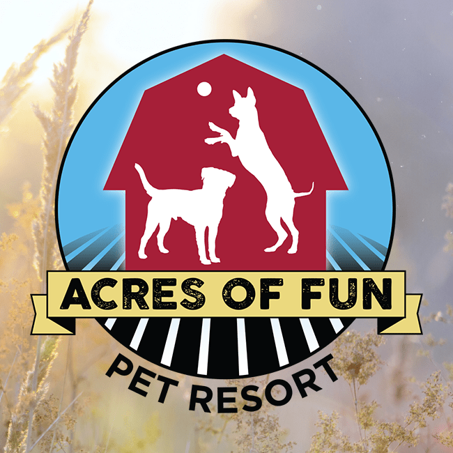 acres-of-fun-pet-resort