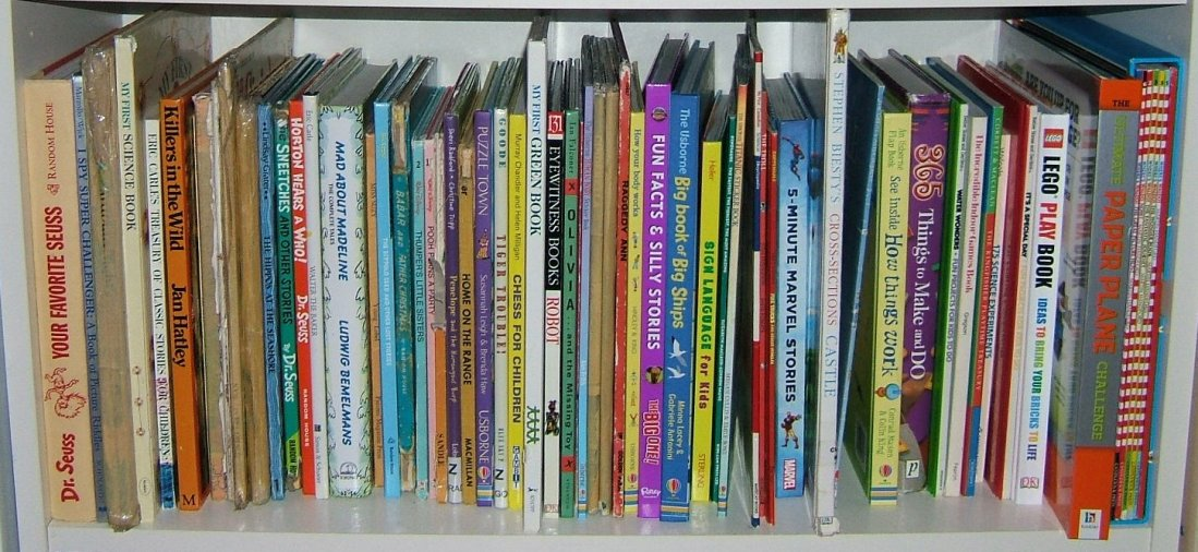 Book Shelf of Children's Books
