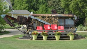 Lacombe Corn Maze – Review