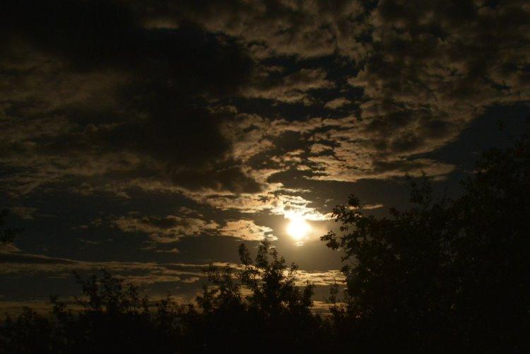 moonrise-at-dilberry-lake-pp