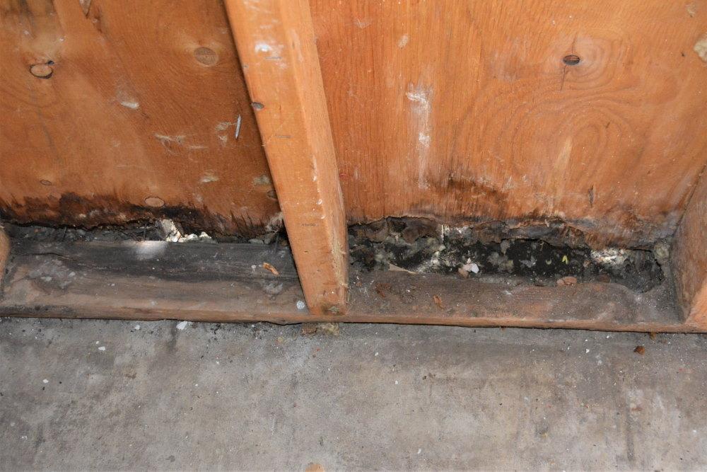 Severe water damage to framing of garage