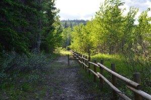 Double rail wood fence