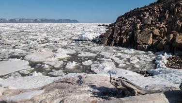 Eisschollen so weit das Auge reicht... Die Fischer können immer noch nicht rausfahren