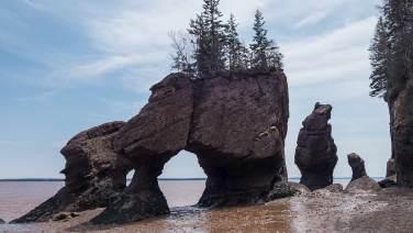 Hopewell Rocks: bei Ebbe kann man durch's Tor gehen.