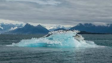 Fly-In vor dem Meares Glacier.