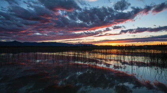 Farbenprächtiger Sonnenuntergang am Beaverdam Lake.