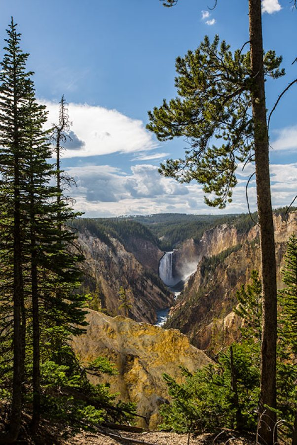 The Grand Canyon of the Yellowstone – der Gelbe Stein ist Namensgeber des Parkes.
