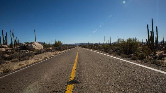 Die Mex1 führt uns hinunter in den südlichen Teil der Baja.