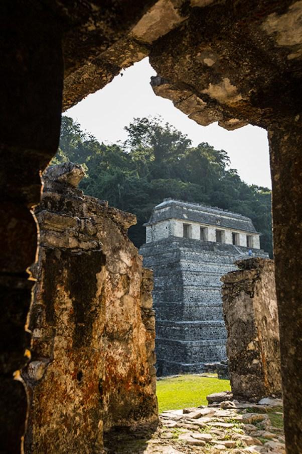 In Palenque können wir in die Ruinen rein gehen.