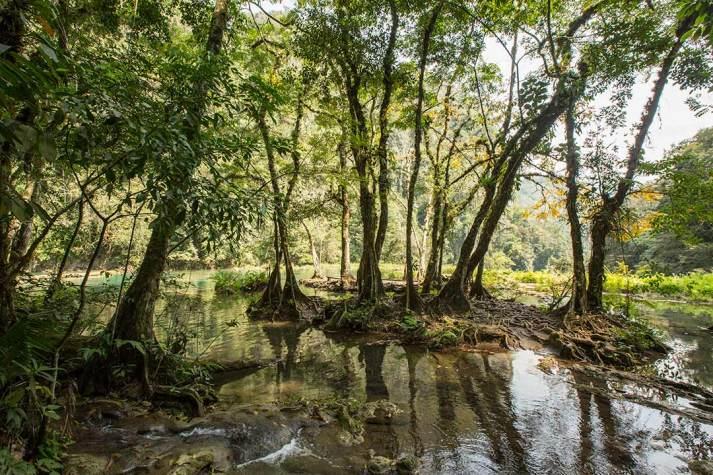 Die natürlichen Pools von Semuc Champey laden zum Baden ein.