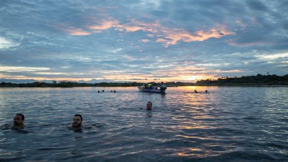 Sonnenuntergangs-Schwimmen.