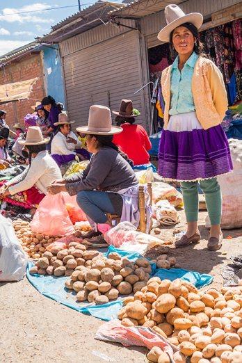 Es gibt unzählige Sorten Kartoffeln zu kaufen.