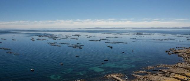 Am Titicaca-See findet unsere Peru-Reise ihr vorläufiges Ende.
